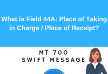 Field 44A: Place of Taking in Charge/Dispatch from .../Place of Receipt