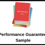 Performance Guarantee Sample